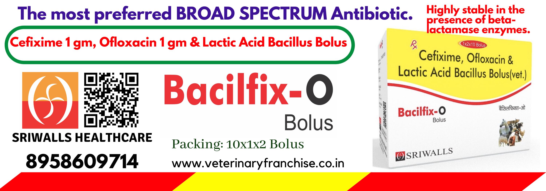Cefixime & Ofloxacin Bolus
